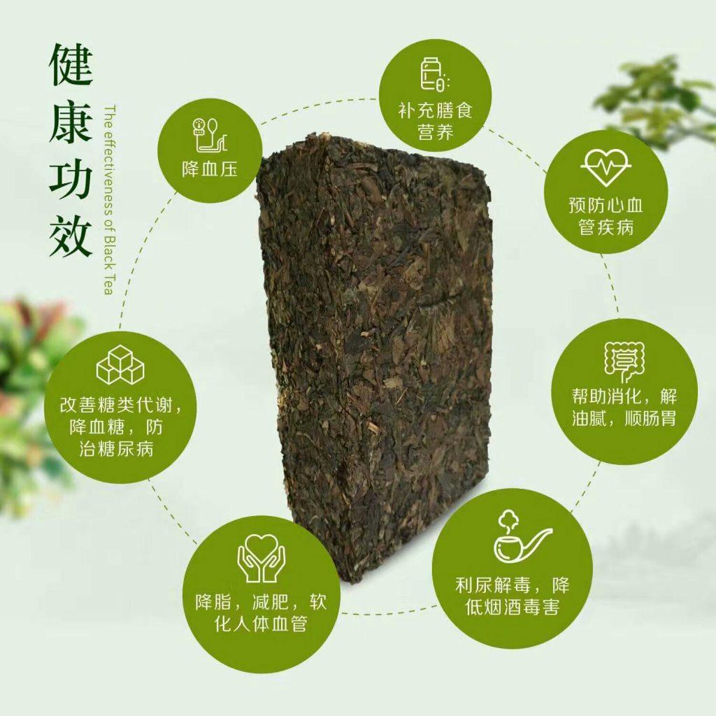Fermented Tea Benefits
